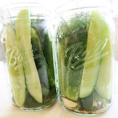 BE CAREFUL NOT TO CRUSH THE CUCUMBERS WHEN PUTTING THEM IN THE JAR